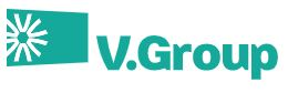 V. Group Limited